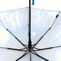 Зонт полуавтомат 2271