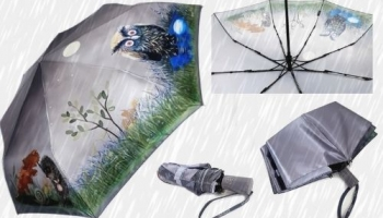 Качественный зонт: как правильно выбрать