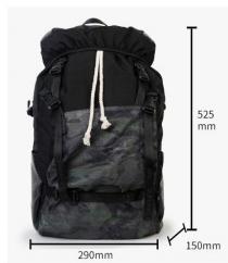 Рюкзак спортивный Danny Bear